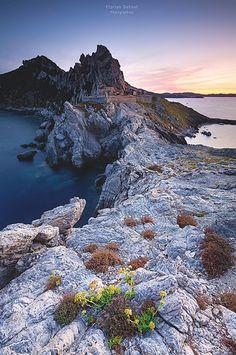 Le Cap des mèdes à Porquerolles (par Florian Debout - Photographies)