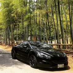 Peugeot Rcz, 3008 Peugeot, Black Beast, Mazda 6, Amazing Cars, Luxury Cars, Audi, Black Rims, Instagram