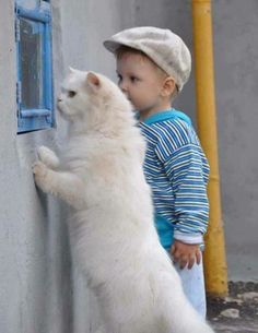 boy and white #cat