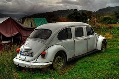 Beetle Limousine #Cool #WeirdLimos #Cool #Exotic #Cars #CarsofPinterest