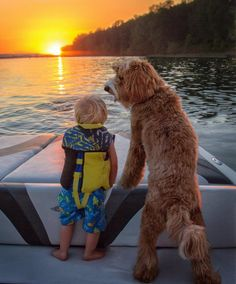 Reagan the labradoodle and Little Buddy on a boat