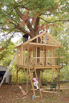 Tree House Build   Treehoues   Pinterest   Tree Houses  Tree House    Tree House Build