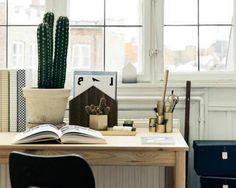 Díselo con Cactus : Cada día más Tendencia - Nordic Treats