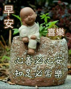 Good Morning Greetings, Good Morning Wishes, Morning Messages, Good Morning Quotes, Good Morning Picture, Morning Pictures, Chinese Quotes, Little Buddha, Got The Look