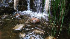 Waterfall, Instagram, Nature, Outdoor, World, Colombia, Naturaleza, Fotografia, Outdoors