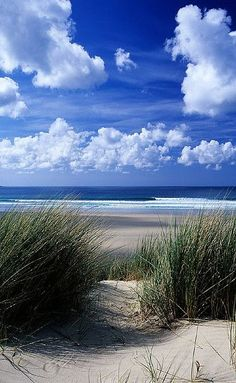 All beaches are beautiful Dunes at Gwithian near St Ives, Cornwall, UK