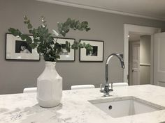 Like the colour of the Walls Cornforth White as the colour for splashbacks Grey Cupboards, Paint For Kitchen Walls, Kitchen Wall Colors, Grey Kitchen Cabinets, Kitchen Wall Design, Grey Kitchen Island, Grey Kitchens, Luxury Kitchens, Cool Kitchens