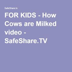 FOR KIDS - How Cows are Milked video - SafeShare.TV