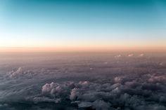 Image of Elysian Ed - Flight