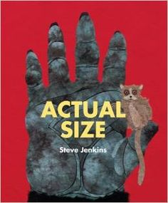 Actual Size by Steve Jenkins. Both large and small animal parts shown in actual size. Math Books, Science Books, Science For Kids, Class Books, Preschool Books, Book Activities, Kindergarten Books, Math Resources, Educational Activities