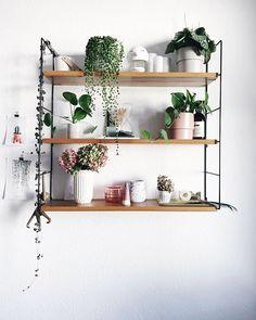Pflanzenliebe @paulsvera Plantgang versammelt auf dem Vintage String Regal. Die beste Dekoration für's Regal sind Pflanzen wie String of Pearls, String of Hearts und Pilea. Verschöner dein Zuhause mit Pflanzen und gestalte deinen Urban Jungle