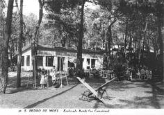 S.Pedro de Moel - Bambi