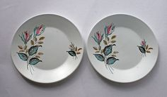 Two Alfred Meakin 1950's Side Plates Night by gardenfullofVintage