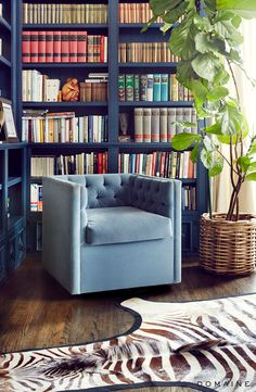 Reading nook in library with navy bookshelves and large indoor plant