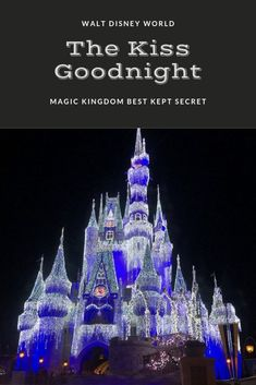 Have you ever wondered what happens when Magic Kingdom is finished for the night? Just on two minutes, Walt Disney World The Kiss Goodnight is the beautiful way that the Magic Kingdom Finishes up for the evening. Disney World Parks, Disney World Planning, Disney World Vacation, Disney Vacations, Disney World Tips And Tricks, Disney Tips, Kiss Goodnight, Park Around, Disney Magic Kingdom