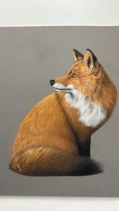Process of working on this Fox piece in pastels on pastelmat Cheetah Drawing, Fox Drawing, Pastel Drawing, Wildlife Paintings, Wildlife Art, Animal Paintings, Crayons Pastel, Pastel Pencils, Realistic Animal Drawings