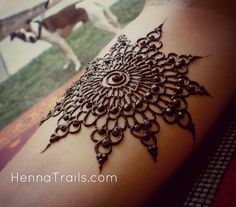 ✧✧ #HennaInspiration ✧✧ Henna at Chico World Fest 2013