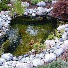 733 meilleures images du tableau Bassin de Jardin   Swat, Dream ...