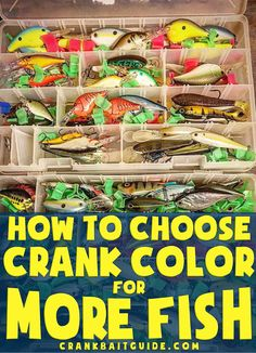 How to choose crank bait color to catch more fish in any water or weather