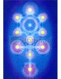 Léčivý obrázek - Strom poznání
