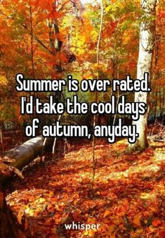 Fall Images, Fall Pictures, Fall Pics, Autumn Cosy, Autumn Fall, Thailand Travel Tips, New England Fall, Libra Quotes, Poems Beautiful