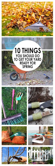 10 Things You Should Do to get Your Yard Ready For Spring