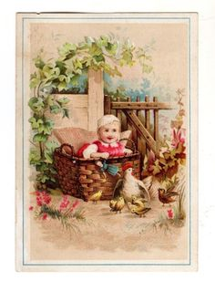 ca 1880s GREAT OVERLAND & PACIFIC TEA CO. Trade Card CHILD in BASKET & CHICKENS