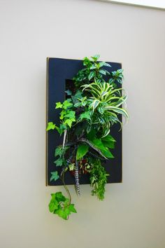 Crazy Tricks Can Change Your Life: Artificial Plants Outdoor Pots artificial gar. Crazy Tricks Can Change Your Life: Artificial Plants Outdoor Pots artificial garden how to make. Plant Art, Plant Decor, Jardim Vertical Diy, Moss Wall Art, Decoration Plante, Outdoor Pots, Office Plants, Succulents Garden, Succulent Arrangements
