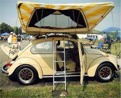 Camper volkswagen bug