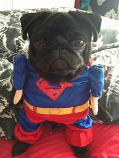 he can be my Superman ANY day !!! <3 #lovethissquishyface