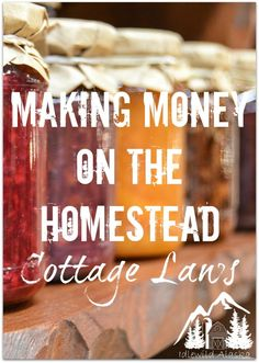 "Making Money on the Homestead - Cottage Laws -- There are so many ways to make money on the homestead, which is great, because so many homesteaders are striving to be independent and off the grid, not tied down to the ""rat race"" in any way. One of the most common is through ""Cottage Laws,"" which enables the sales of homemade food goods. Find..."