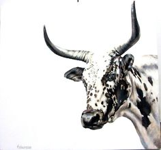 Nguni painting- Acrylic on canvas Farm Paintings, Animal Paintings, Cow Art, Horse Art, Art And Illustration, Cow Pictures, Bull Cow, Cow Painting, Farm Art