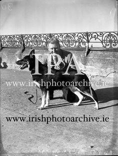 Mr William Murphy, Ballymoney Rd, Dervock, Co Antrim with his German Shepherd 'Koleen of Wolfhill' winner of Best in Show, Bray Dog Ireland Pictures, Old Pictures, Dog Show, Photo Archive, 1950s, Irish, German, Gallery, Dogs