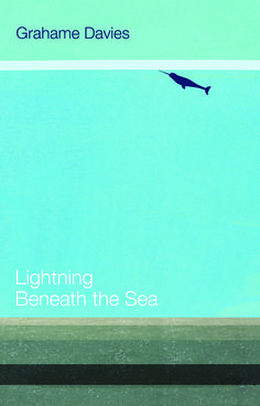 £8.99 Lightning Beneath the Sea is the first collection of poems in English by Grahame Davies, featuring the work that he has honed over the years as he has read them at literary festivals, conferences and events world-wide. #LightningBeneaththeSea #Poetry #Poems