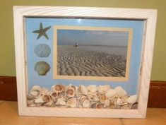shadow boxes with shells and their id - Google Search