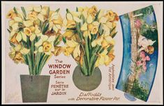 Daffodils with Decorative Flower Pot. | Museum of Fine Arts, Boston