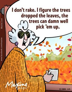 I don't rake. I figure the trees dropped the leaves, the trees can damn well pick them up.