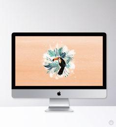 Wallpaper Backgrounds, Iphone Wallpapers, Creative Studio, Tropical, Digital, Cute, Human Resources, Career, Tech