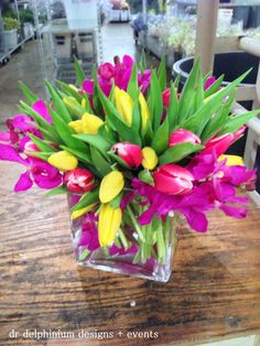 Tulips & Orchids, Dr Delphinium