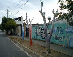 DE LA VIDA A LA MUERTE SOLO CUENTA HASTA TRES (2012) #arte #arbolmuerto  #barquisimeto #cabudare #lara #raizabarros #raizamileva #venezuela