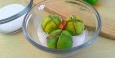 Uno de los productos más utilizados en el mundo entero es el limón, es utilizado en diversas en comidas y bebidas, aportándole un gran sa...