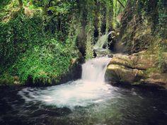 Ese momento en el que descubres un rincón perdido y no puedes parar de hacer fotos  #cascadasdelosnavares #descubriendolarioja #lariojaapetece