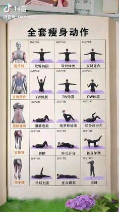 Home Body Weight Workout, Full Body Workout Program, Gym Workout Chart, Full Body Gym Workout, Beginner Yoga Workout, Gym Workout Videos, Gym Workout For Beginners, Fitness Workout For Women, Sport Fitness