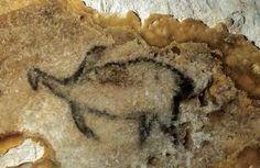 La gruta Cosquer de Francia tiene muchas pinturas de animlaes, 11 marinos. Pero uno muestra un extraño animal, pero es normalmente identificado como un pingüino.