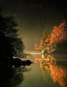 One of the many reasons I would love to visit Scotland.  Misty, Loch Ard, Scotland photo by ould