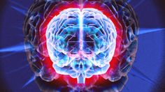 Brainfood: 50 ways to boost your brain power        Our brain...