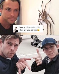 Literally 100 Of The Funniest Marvel Memes Of 2018 - Funny Superhero - Funny Superhero funny meme - - Literally 100 Of The Funniest Marvel Memes Of 2018 The post Literally 100 Of The Funniest Marvel Memes Of 2018 appeared first on Gag Dad. Avengers Humor, Marvel Jokes, Marvel Avengers, Funny Marvel Memes, Dc Memes, Marvel Actors, Marvel Dc Comics, Memes Humor, Marvel Heroes