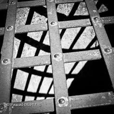 NBD07 - La grille - Alpes de Haute Provence 04