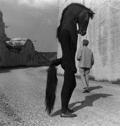 Lucien Clergue - Jean Cocteau croise l'homme-cheval (Tournage du Testament d'Orphée, Les Baux de Provence, 1959)