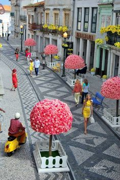 Rua Direita - Aveiro, Portugal